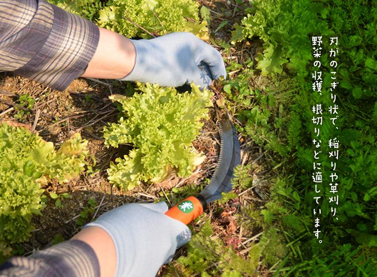 farming-001l